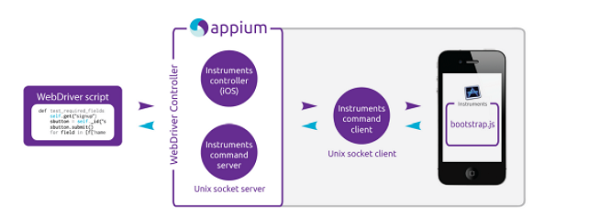 Appium Interaction With iOS