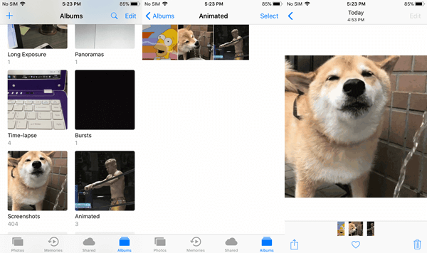 Play GIFs iPhone